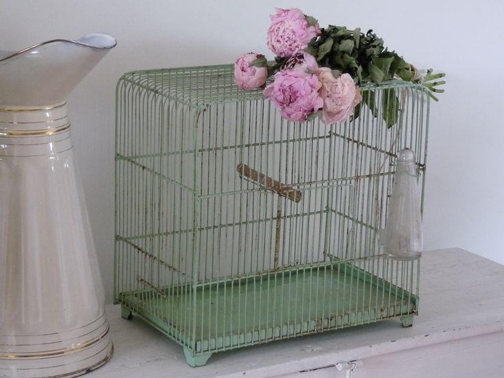 vogelkooi4