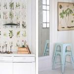Botanische prints aan de muur